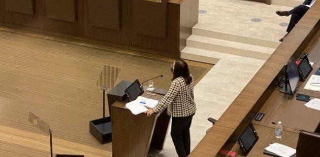 Ministra en el Plenario Legislativo