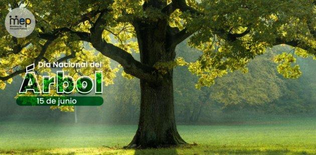Afiche que muestra un árbol frondoso y de tronco grueso sobre un césped verde.