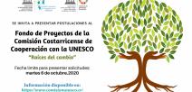 Afiche digital con la presentación de un árbol con raíces destacadas.
